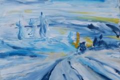 Winter im Fjäll